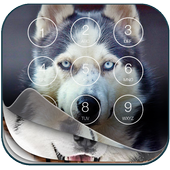 Hasky Lock Screen icon