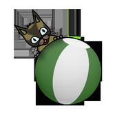 SakiPlay icon