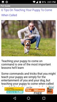 Dog Pet Care Tips poster