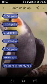 Canto de Calopsita MP3 screenshot 1