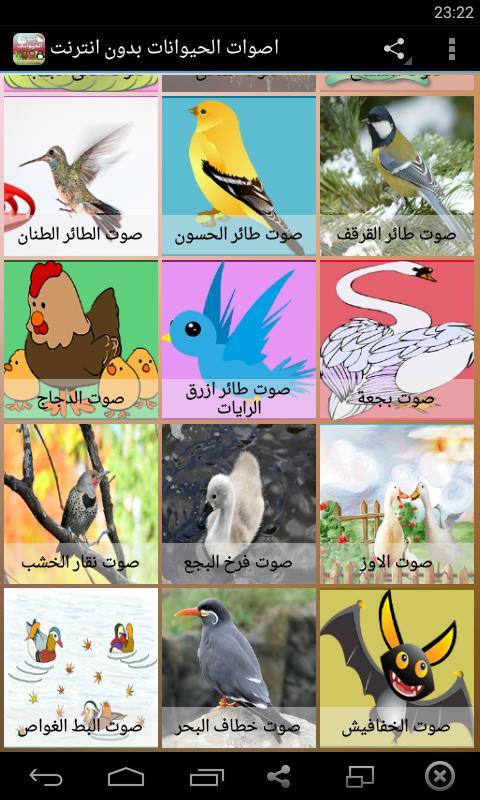 أصوات الحيوانات poster أصوات الحيوانات apk screenshot أصوات الحيوانات apk  screenshot ...