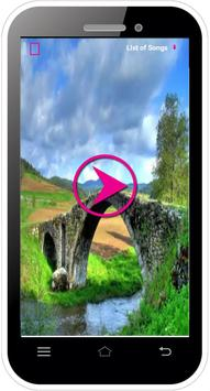 Video/Audio (MP3,MP4) player poster