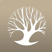 Sandbox201 icon