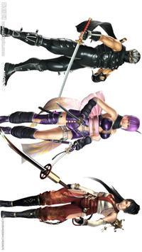 Ninja Rush poster