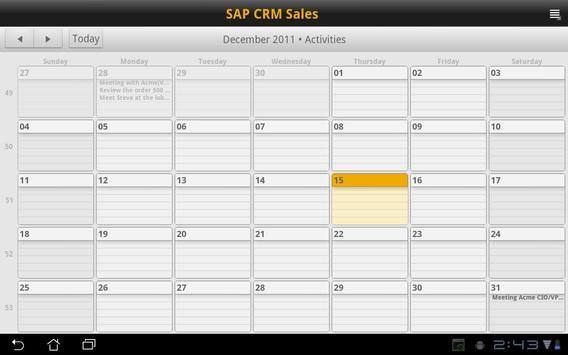 SAP CRM Sales screenshot 2