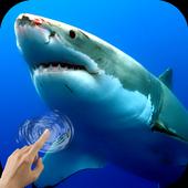 Sharks Underwater icon