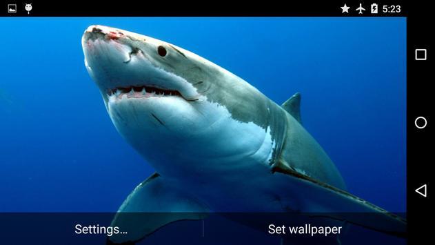 Sharks Underwater screenshot 3
