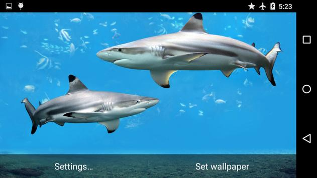 Sharks Underwater screenshot 5