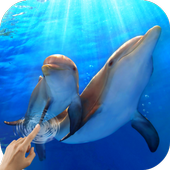 Water Effect: Dolphins icon
