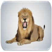 Lion sounds icon