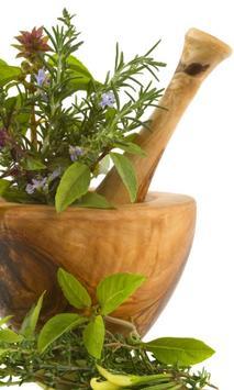 Tips de medicina natural apk screenshot