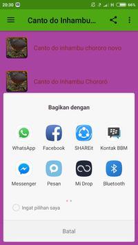 Canto do Inhambu Offline apk screenshot