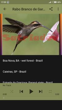 Rabo Branco de Garganta screenshot 3