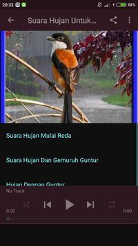 Suara Hujan Untuk Terapi Burung screenshot 1
