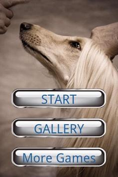Dog Puzzle: Afghan Hound poster