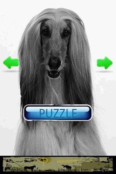 Dog Puzzle: Afghan Hound screenshot 1