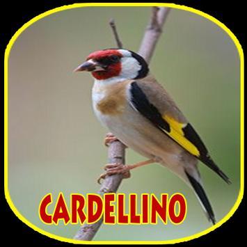 IL CANTO DEL CARDELLINO SCARICARE