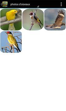 Collection de sons d'oiseaux screenshot 6