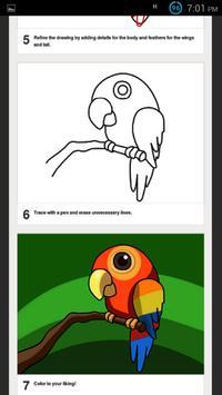 How to Draw Birds-DrawingBirds apk screenshot