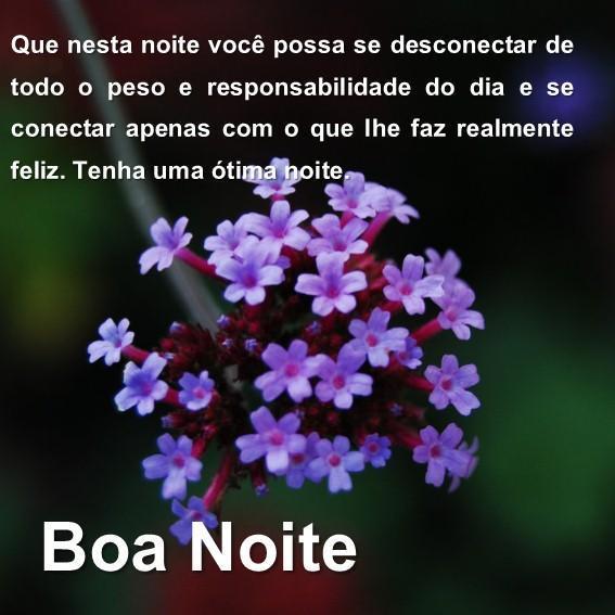 Mensagem De Boa Noite Com Lindas Flores安卓下载安卓版apk