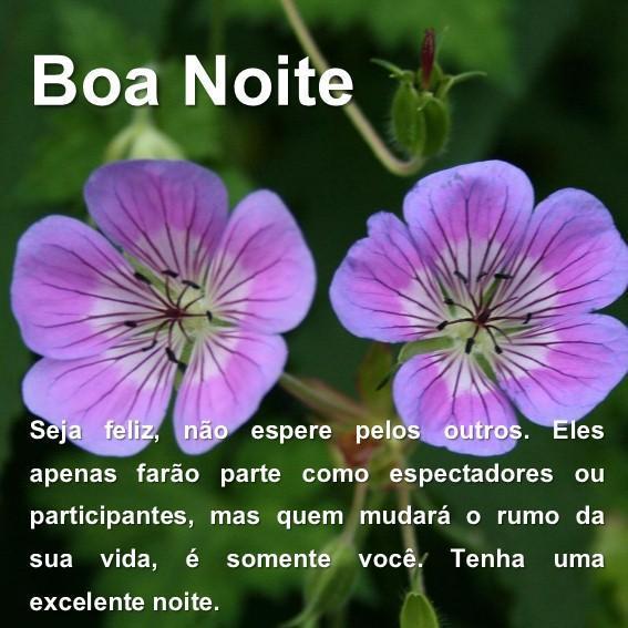 Mensagem De Boa Noite Com Lindas Flores Pour Android