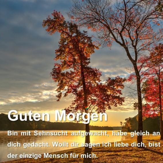 Guten Morgen Grüße Sprüche For Android Apk Download