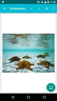 Underwater World Wallpapers! apk screenshot