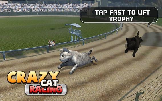 Crazy Cat Racing poster