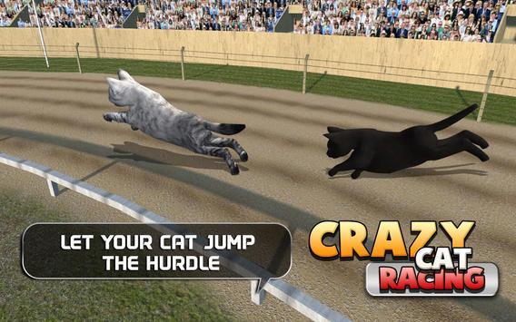 Crazy Cat Racing apk screenshot
