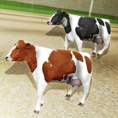 Crazy Cow Racing icon