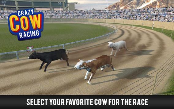 Crazy Cow Racing apk screenshot