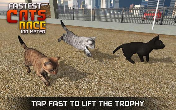 Fastest Cats Race - 100 Meter screenshot 9