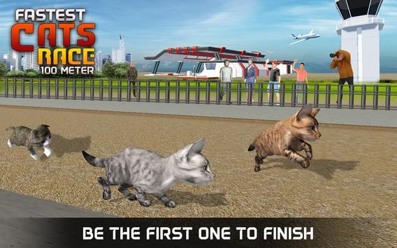 Fastest Cats Race - 100 Meter apk screenshot
