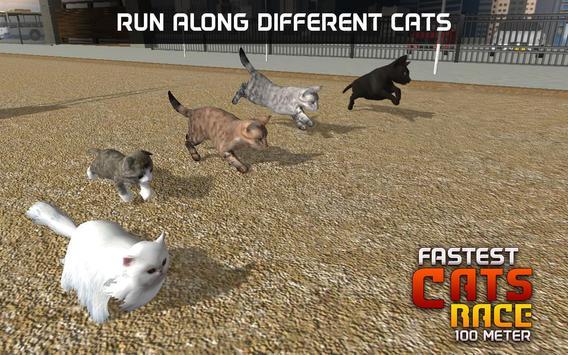 Fastest Cats Race - 100 Meter screenshot 11