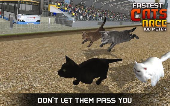 Fastest Cats Race - 100 Meter screenshot 2
