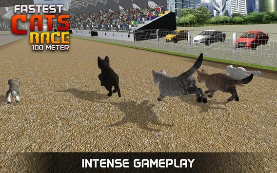 Fastest Cats Race - 100 Meter screenshot 3