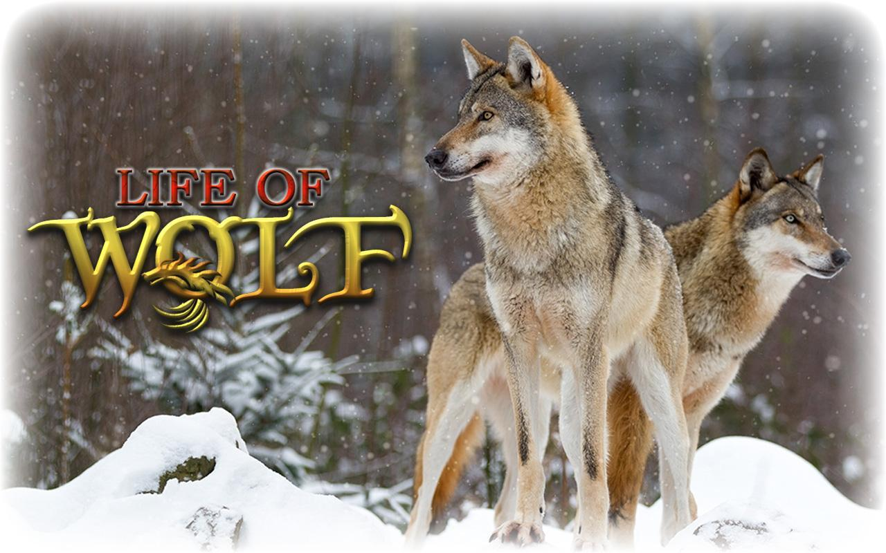 Wolf Simulation Game