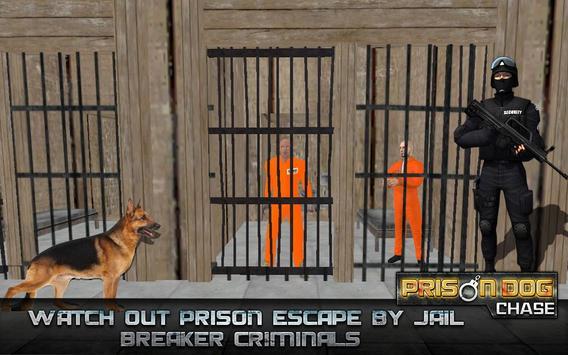 Prisoner Dog Chase poster