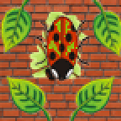 Insect Smasher icon