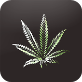 Weed HD Wallpapers Backgrounds icon