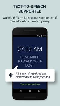 Wake Up! Alarm poster