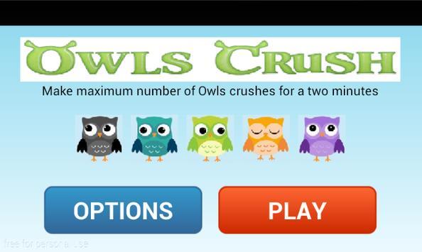Owls Birds Crush poster