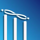 Infinite Cricket icon