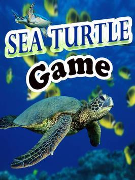 Sea Turtle Game poster