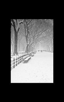 Photo HD Fairy Tale Snow LWP screenshot 7