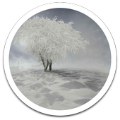 My Photo Wall Winter Trees LWP icon