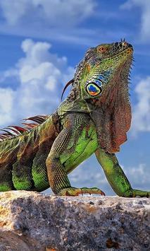 Reptiles and Lizard Best New Jigsaw Puzzles apk screenshot