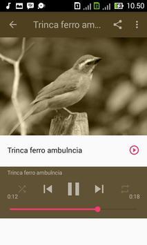 Trinca Ferro Verdadeiro apk screenshot