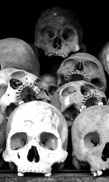 Death Skull Gun Theme screenshot 2