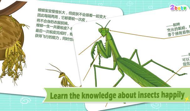 Mantis - Insect World apk screenshot